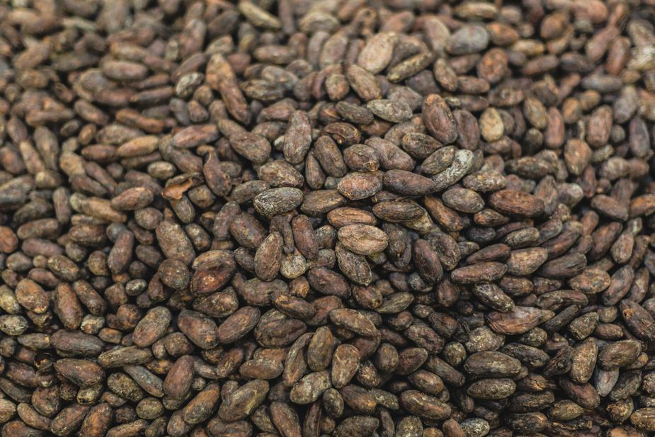 Chocolate: The Decadent Indulgence for your Skin